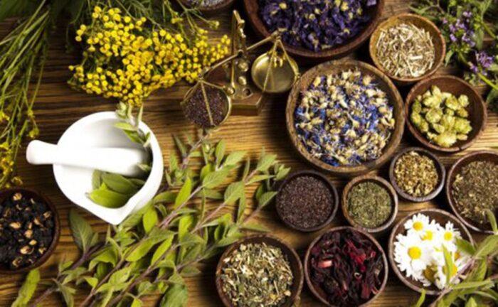 Hierbas medicinales: 10 beneficios y propiedades