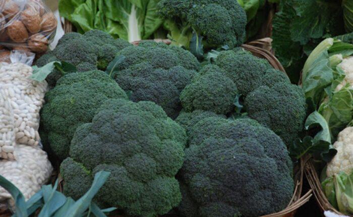 Brócoli: Beneficios y propiedades para tu cuerpo