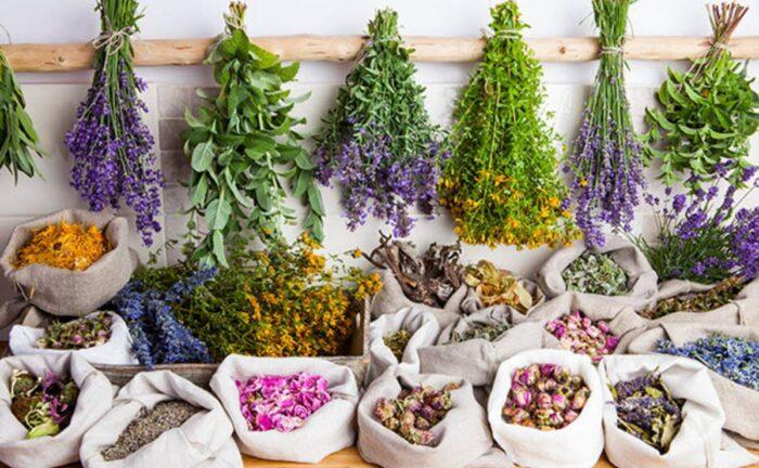 Remedios naturales para evitar las canas